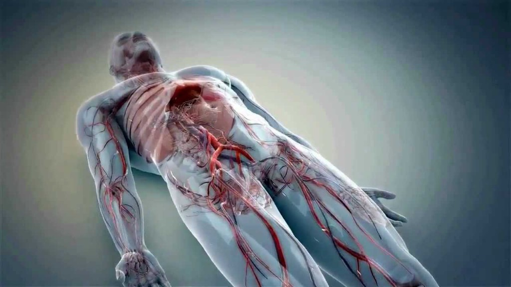 3d-animation-medical